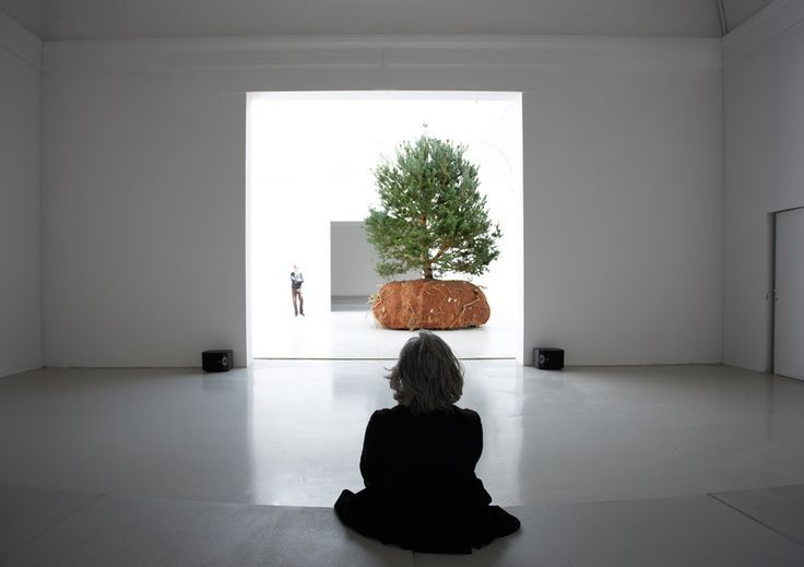 FRENCH pavilion. Moving tree by Boursier Mougenot. Venice Biennial. 2015