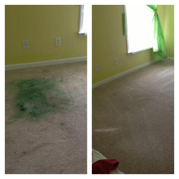 Carpet Cleaning Frankston Is Professional And Affordable Carpetcleaning Service Provider In Melbourne And Sarrou Steam Clean Carpet How To Clean Carpet Carpet