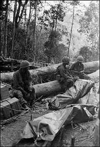 173rd Airborne, Hill 875. Battle at Dak To.