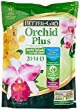 Photo of Caring for Phalaenopsis Orchids, for the Absolute Beginner or the Hopelessly Confused