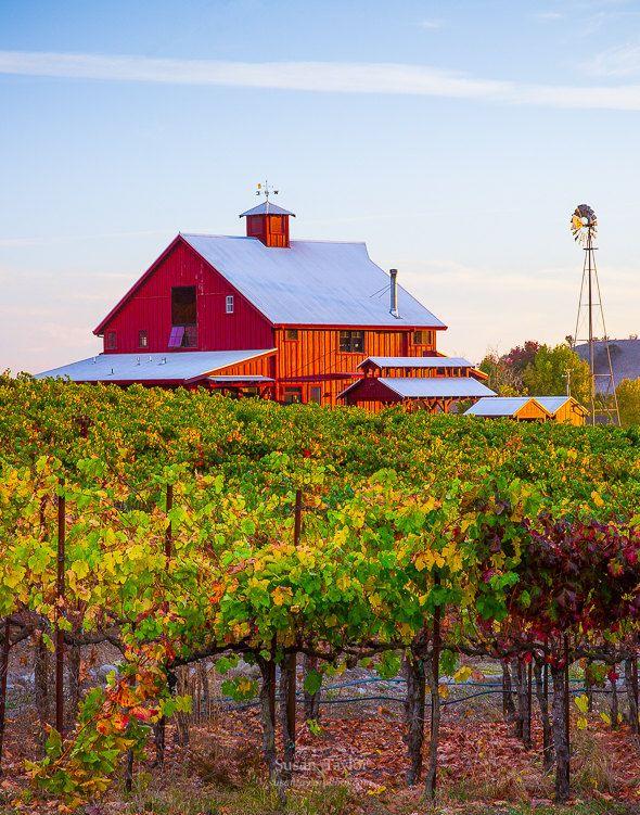 Red Barn Print Wine Country Photo Napa Valley Print