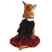 Tartan Velvet Dog  Dress