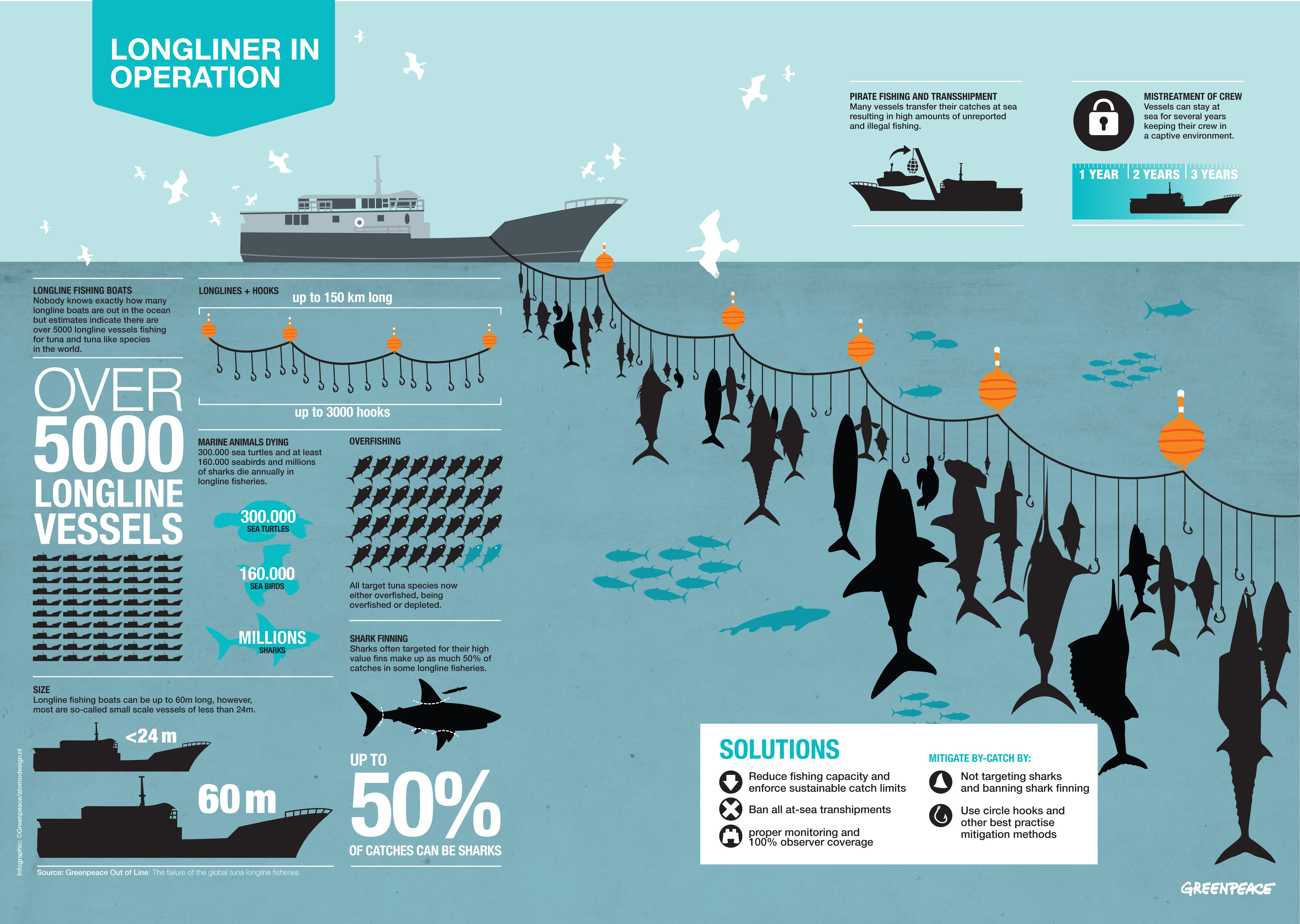 Pin by buttfacemonkey on Over Fishing Infographic, Tuna