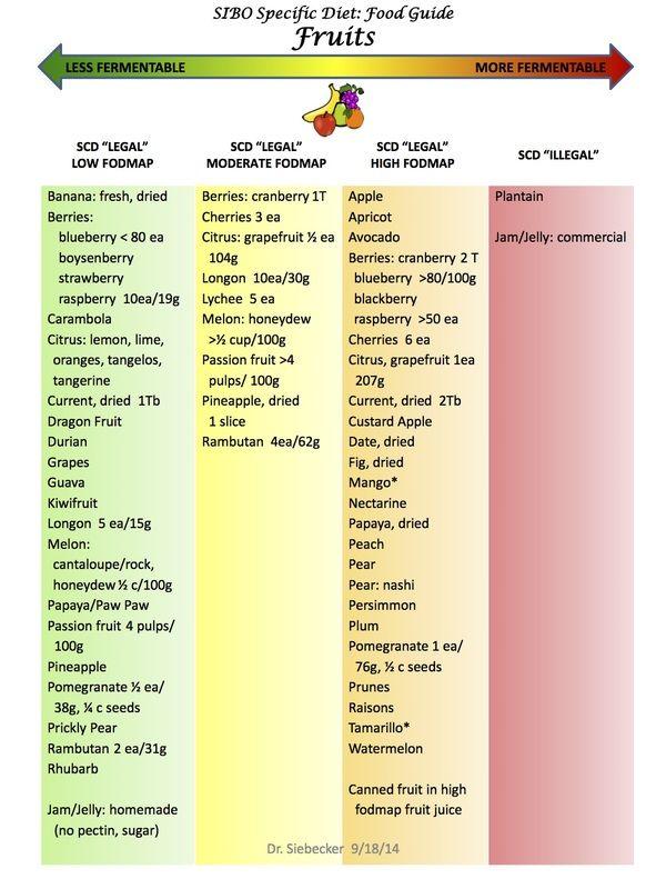 Low Fodmap Scd Food List