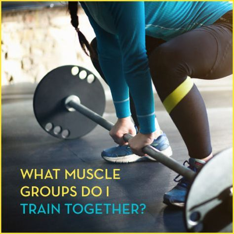 If you've ever wondered which muscle groups to train together, this article will give you the answer.