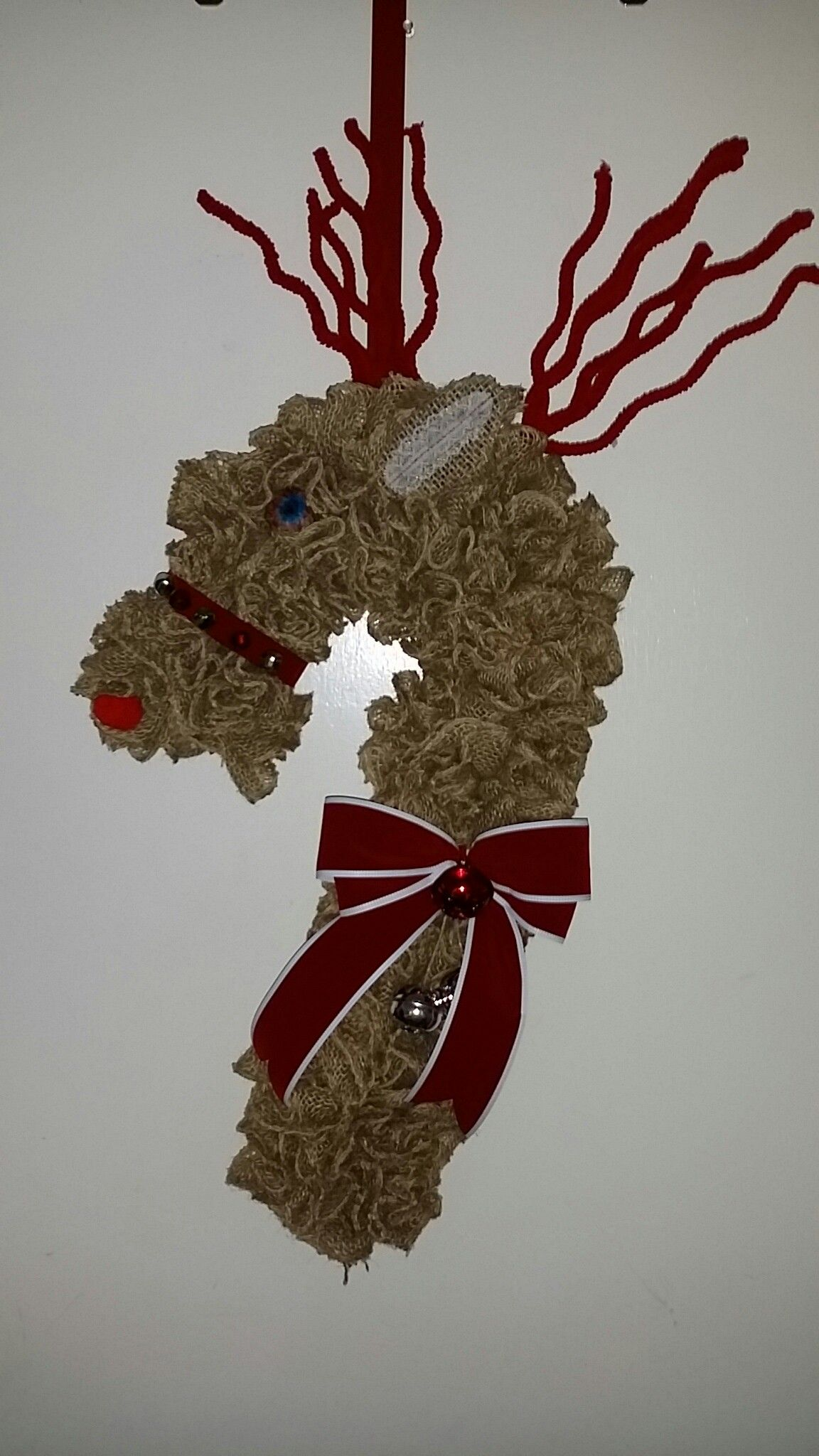 Reindeer Made From A Candy Cane Wire Frame Christmas Crafts Crafts Candy Cane