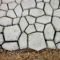 Photo of Inspire Uplift Garden Path Maker Mold Black/Plastic Garden Path Maker Mold