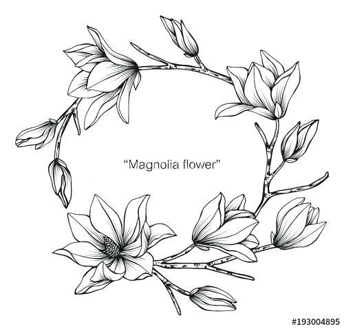 Kolorowanki Dla Doroslych Kwiaty Google Search Flower Drawing Design Flower Drawing Wreath Drawing
