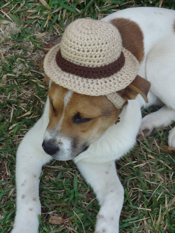Dog Hat Dog Costume The Sherlock Hounds Detectives Hat Dog Bowler Hat Any Size 20 00 Via Etsy Dog Costume Dog Hat Sun Dogs