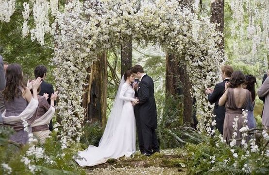Twilight Enchanted Forest Wedding