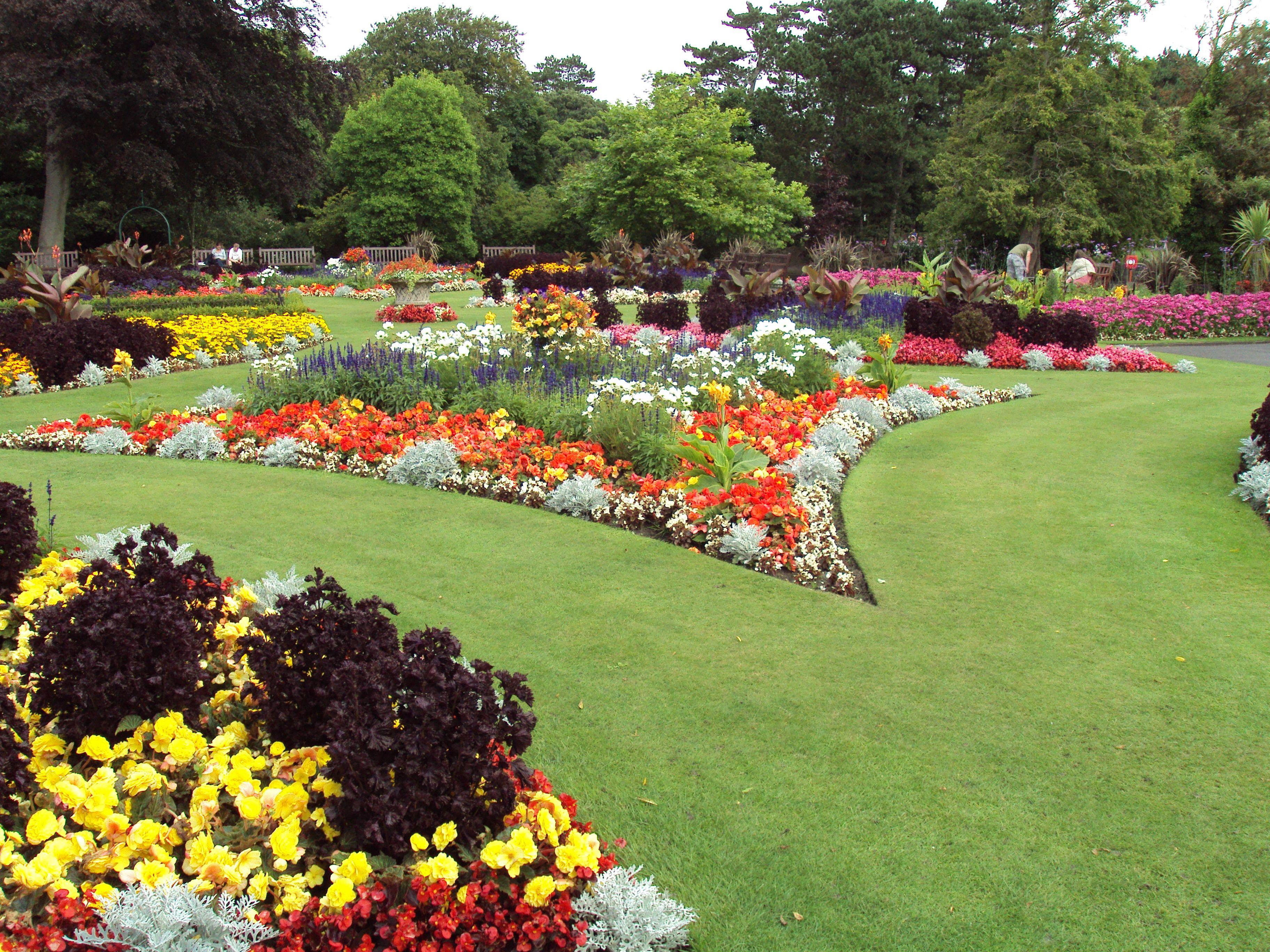Brighter Blooms Nursery Buy Plants Online Read Reviews Garden Pictures Garden Images Beautiful Gardens