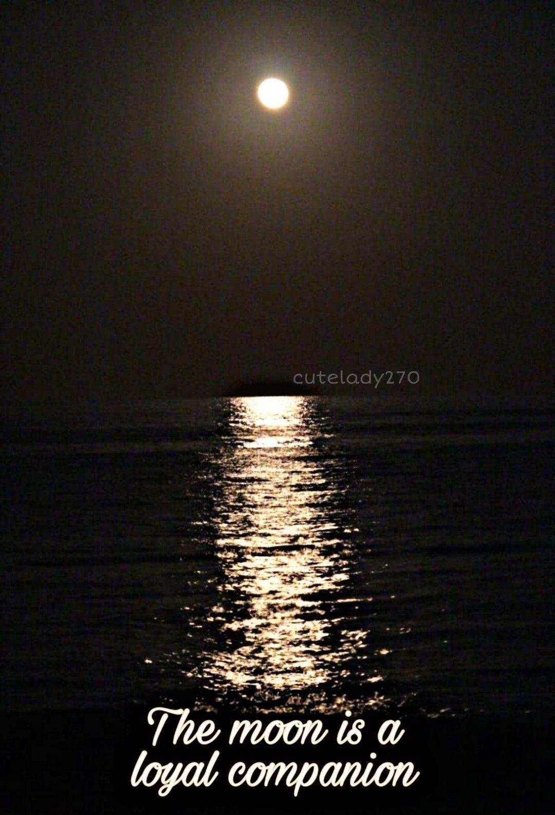 The Moon Is A Loyal Companion Moon Loyal Companion Camping Photography