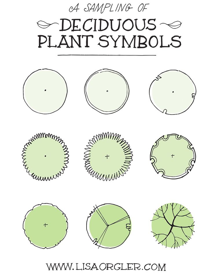 Jul 31 Drawing Plant Symbols Practice Sheet Symbols Plants and