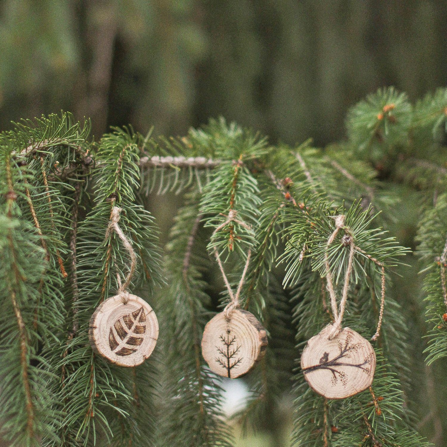 Set of 3 Tree, Owl with Tree, and Leaf Wood Burned Ornaments by GracemereWoods on Etsy https://www.etsy.com/listing/213465439/set-of-3-tree-owl-with-tree-and-leaf