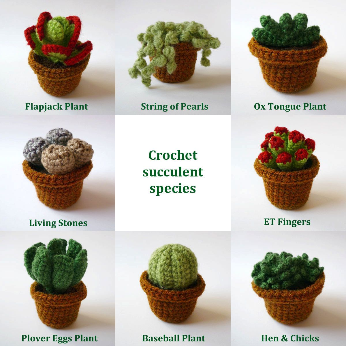 Realistic Crocheted Cacti And Succulents Individual