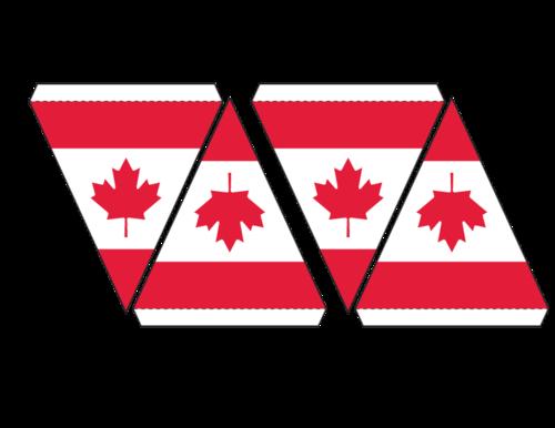 Canadian Flag Maple Leaf Bunting Canada Day Canada Day Bunting