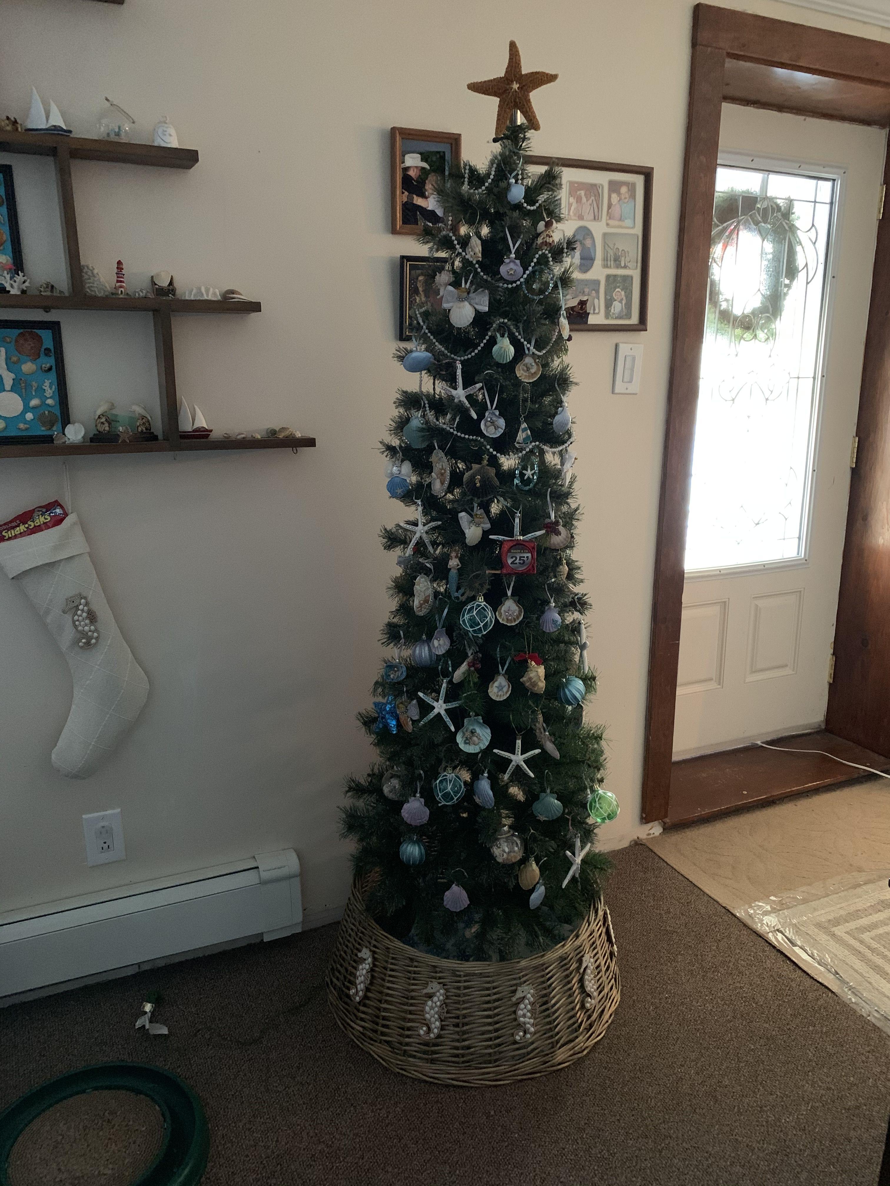 Pin By Debbie Handy On Beachy Christmas Ladder Decor Christmas Tree Decor