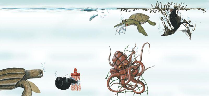 Carlos Velázquez llena de color las profundidades del océano en 'Que treco é esse?', con texto de Maíra Suertegaray, en Edelbra.
