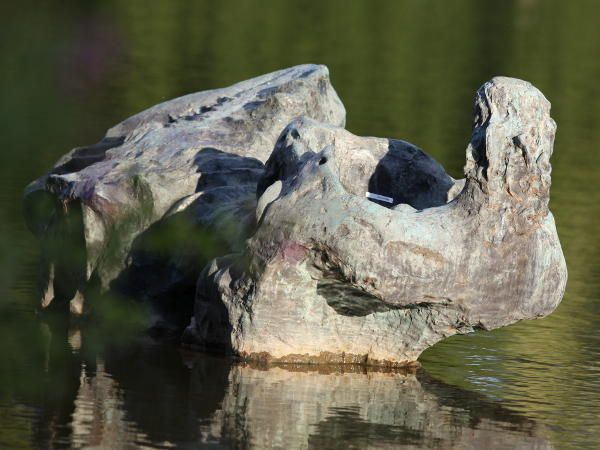 Künstler Hannover hannover hanover skulptur ägäis aufgestellt 1969 künstler toni