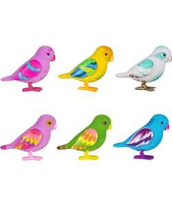 Little Live Pets Birds Now Available Online Http