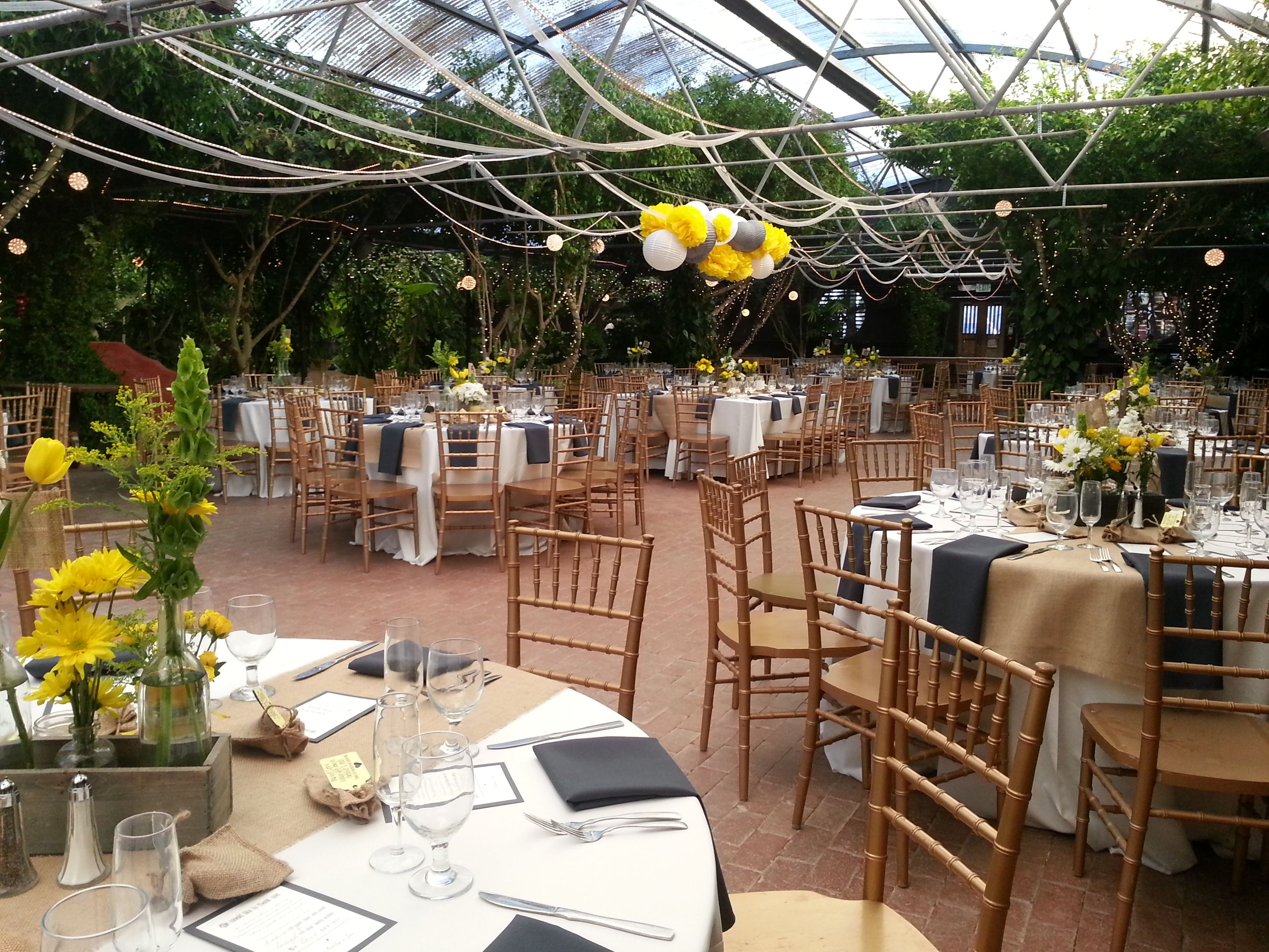 Gray and Yellow Reception at Boojum Tree Hidden Gardens in ...