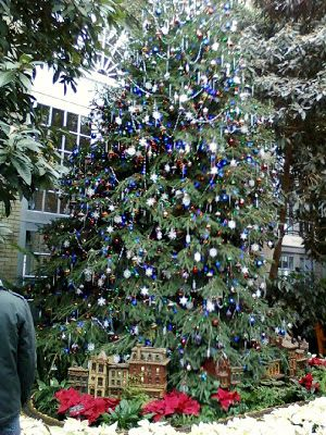 The National Botanic Gardens, which is a living plant museum in Washington D.C. In celebrating the holiday season, the garden is displaying one of the largest indoor Christmas trees.