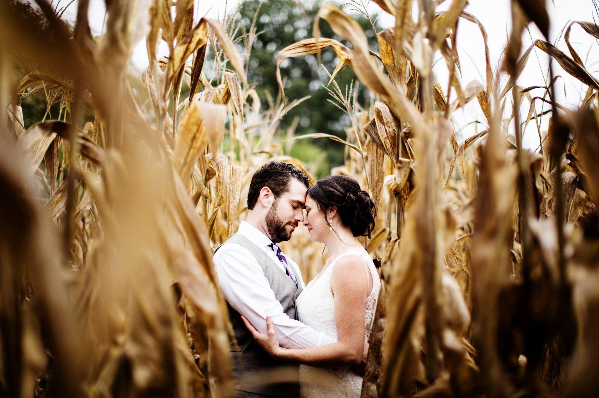 Bohemia Manor Farm Wedding | Farm wedding, Barn wedding ...