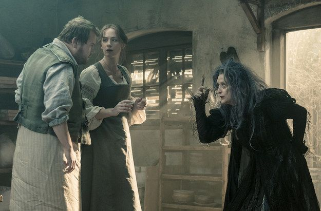 Into the Woods | 35 Movies You Will Be Talking About This Awards Season
