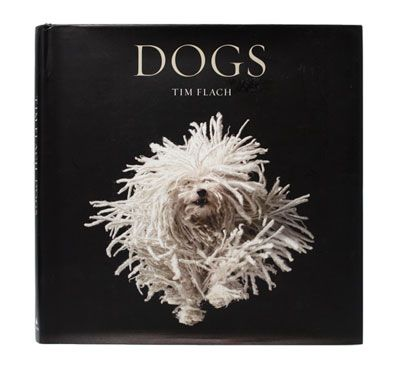 Dogs Coffee Table Book home sweet home Pinterest Coffee and