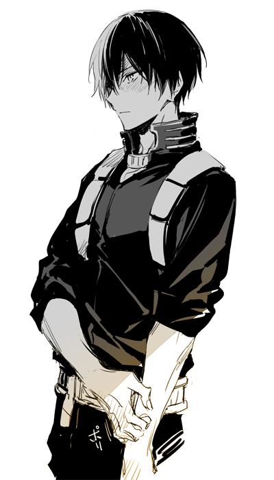 Todoroki Shouto Hero My Hero Academia Manga My Hero Academia Shouto