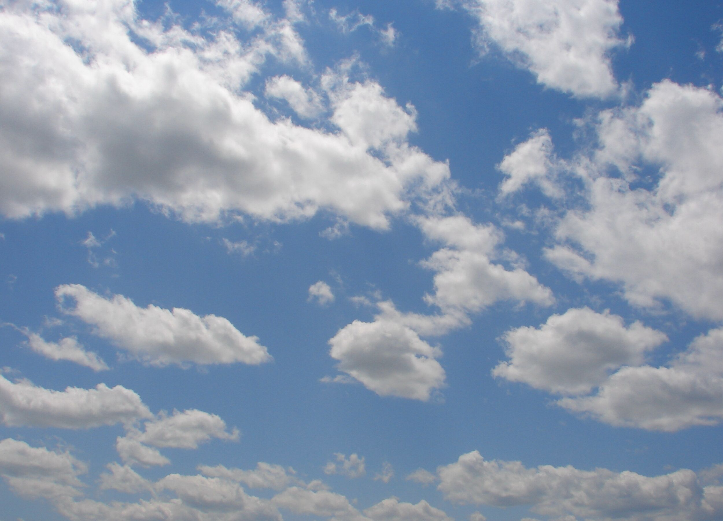 paintings of clouds and sky wild blue yonder sky clouds 14 by
