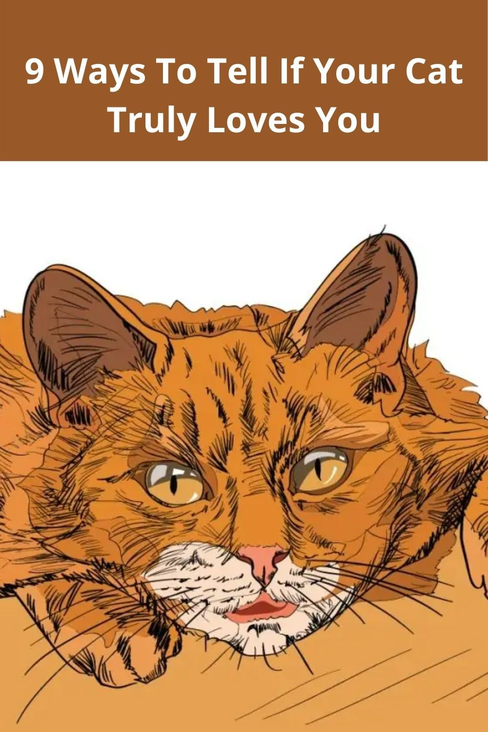 9 Ways To Tell If Your Cat Truly Loves You In 2020 Cat Language Cats Cats And Kittens