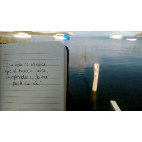 La vida es...