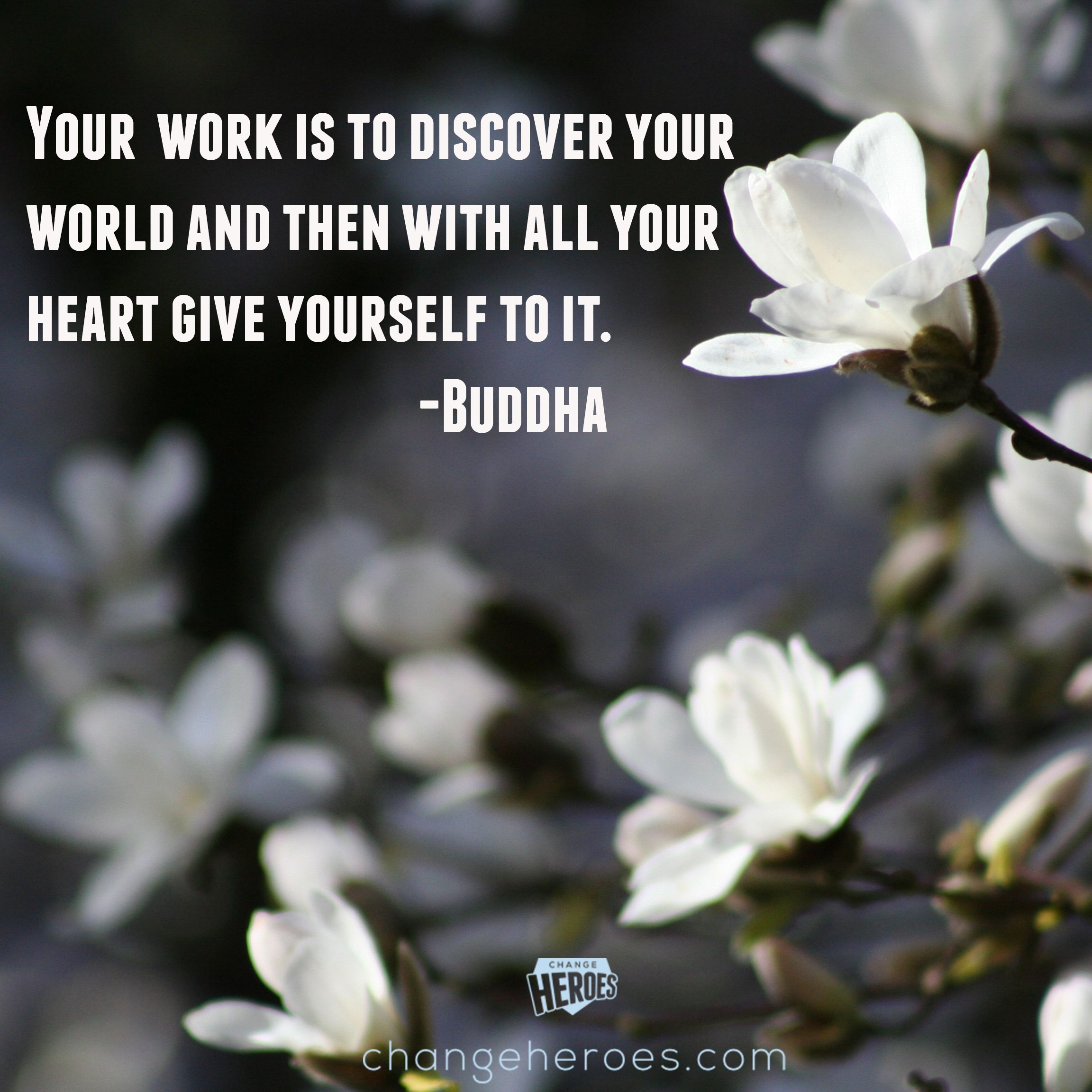 Beautiful Buddha Quote About Living With Purpose Buddha Quotes