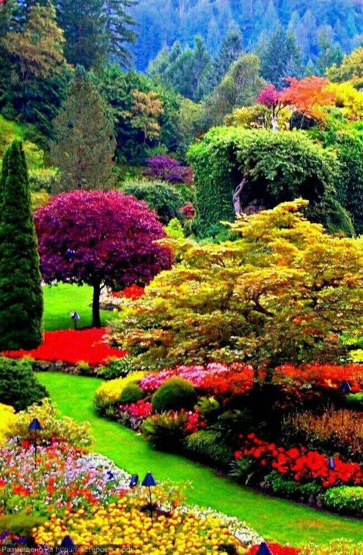 Tips For Landscaping On A Budget Beautiful Gardens Garden Types Beautiful Nature