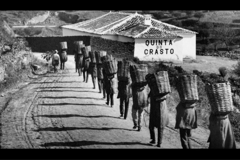 Filme institucional Quinta do Crasto (2020) #Omdesign #Design #Portugal #LeçadaPalmeira #Since1998 #AwardedAgency #DesignAwards #Film #Communication #QuintadoCrasto #Crasto #Douro #VinhodoDouro #DouroWine #IVDP #VinhosPortugueses #PortugueseWines
