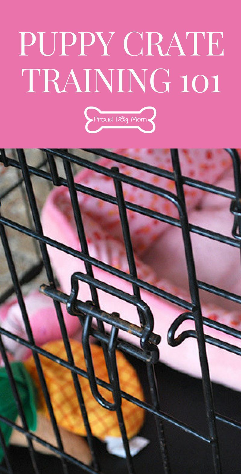 Crate Training 101 Puppy Training Tips Training Your Puppy