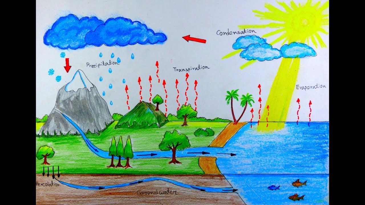 How to draw water cycle for school project