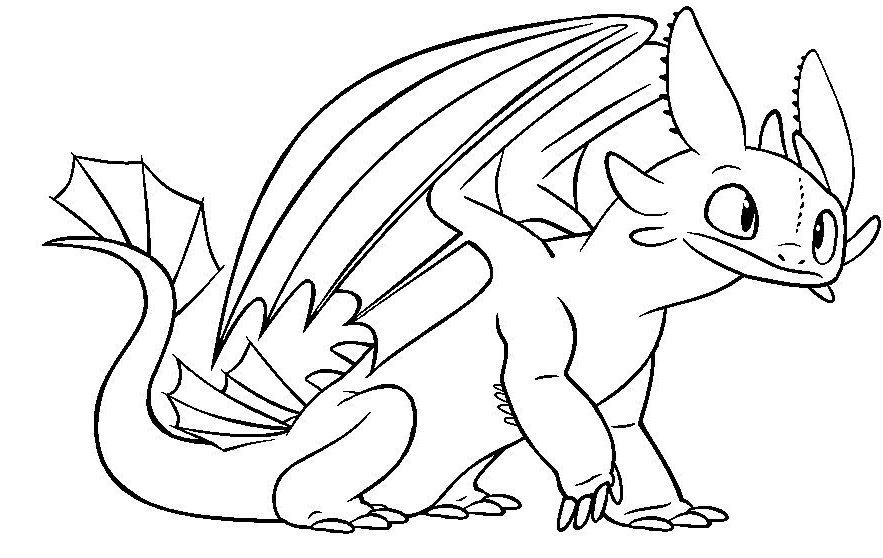 Toothless Night Fury Color Pages Free Coloring Pages Printable Coloring Pages Only Colori Dragon Coloring Page Horse Coloring Pages Animal Coloring Pages