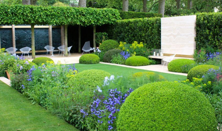 The telegraph garden designed by del buono gazerwitz for Chelsea flower show garden designs