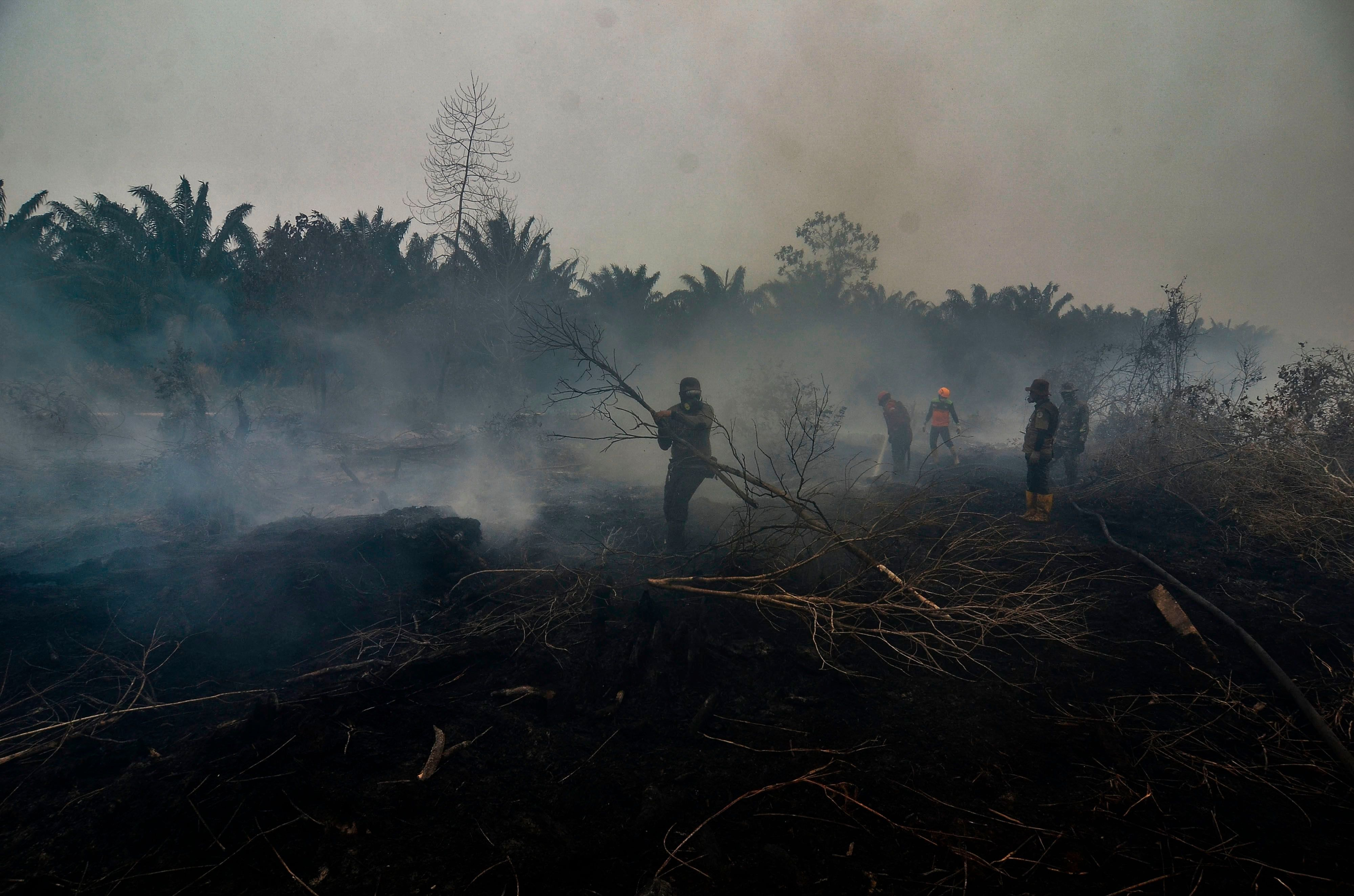 20 photographs of the week photographer forest fire