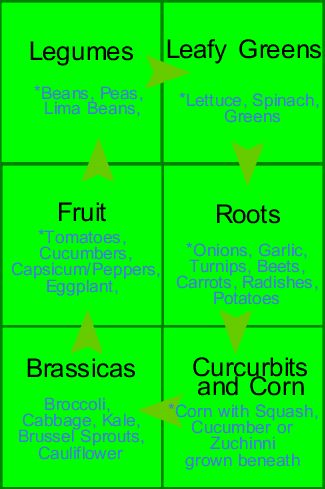 Pin By Tc Beier On Cultivarea Gradinii Crop Rotation Veg Garden Edible Garden