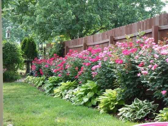 home garden  #KBHomes