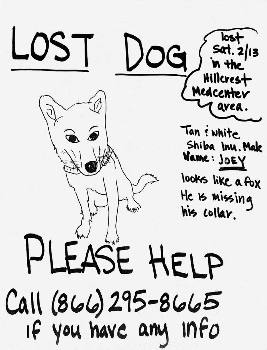 lost pet posters
