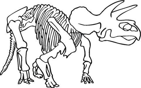 Only Bones Left Coloring Page Dinosaur Pictures Dinosaur Bones