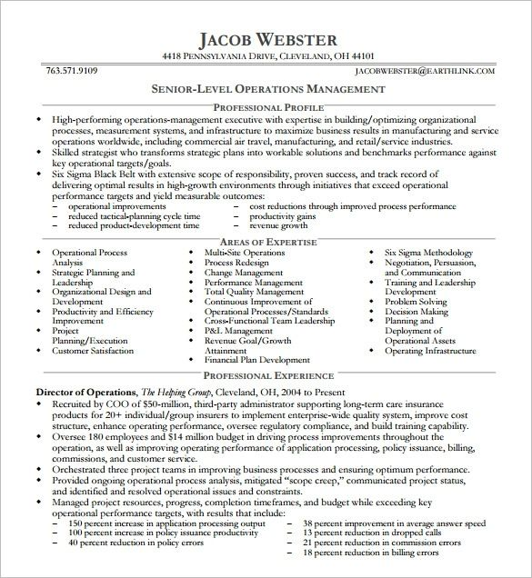 sample executive resume best summary templates excel pdf formats