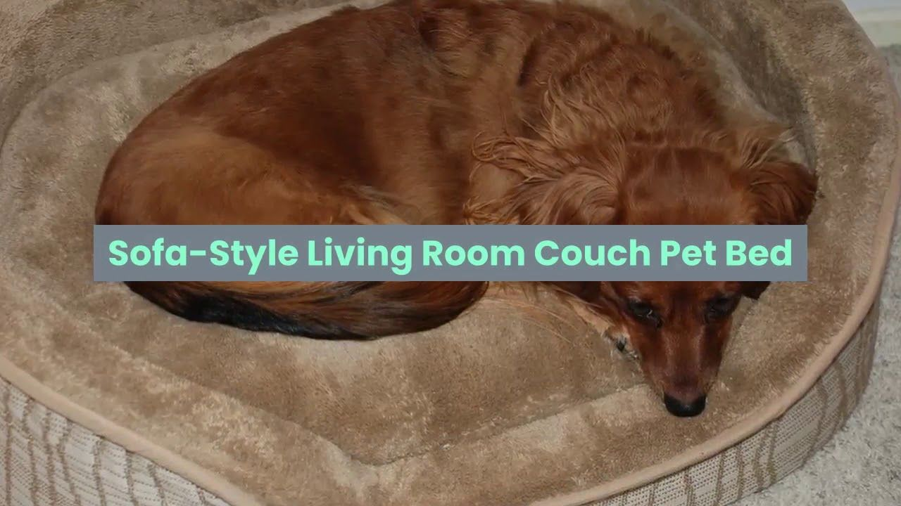 Dog Beds For Large Dogs Clearance Couch Pet Bed Dog Bed Large Dogs