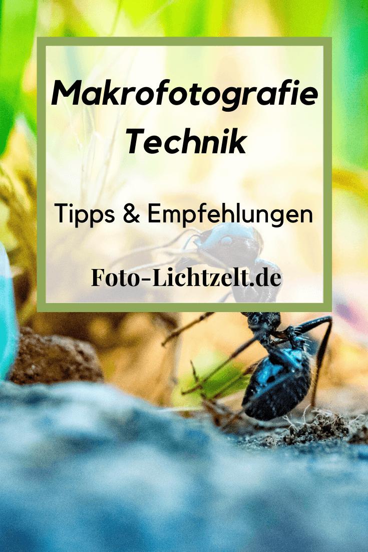 Makrofotografie Technik Kleine Motive Auf Der Grossen Buhne In 2020 Fotografie Produktfotografie Makrofotografie
