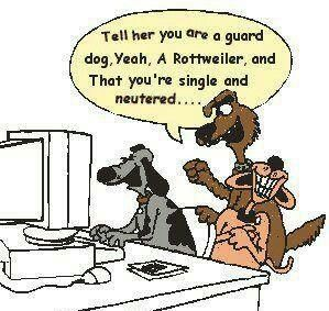 Online Dating Humor Hilarious For The Best Daily Jokes Visit Www Bestfunnyjokes4u Com Rofl Funny Pic Of The Day 8 Dog Humor Cartoon Dog Jokes Funny Dogs