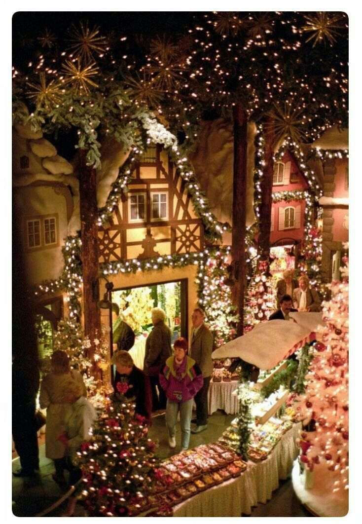 Addobbi Natalizi Tedeschi.Pin Di Antonella Su Addobbi Natalizi In Citta Mercatini Di Natale Natale Immagini Di Natale